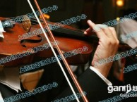 杨浦区虹口区名师辅导 小提琴培训