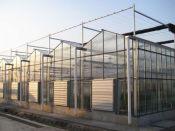 【承接工程】智能温室建设【承航景观】智能温室建设报价优惠