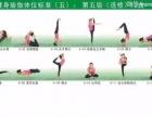 瑜伽教练培训暑假班招生中