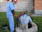 管道检测非开挖修复封堵打捞市政管道清淤