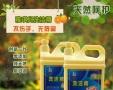 玻璃水防冻液生产设备技术品牌加盟 箱包皮具