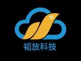 上海电路板开发-嵌入式开发-物联网方案