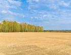 出租或出售阿鲁旗土地,800亩,可短租可分租