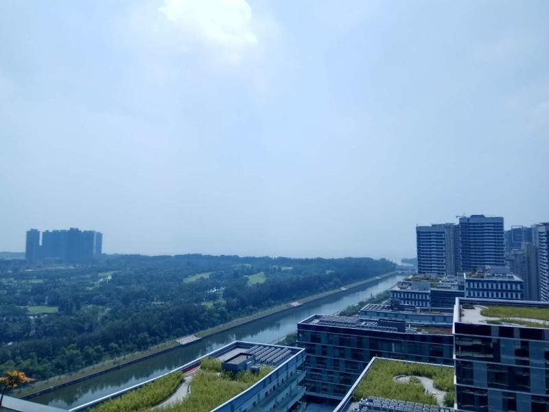 深圳湾科技生态园 956平奢华豪装 海景花园式园林办公!