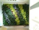 西安生态绿植墙 植物墙 屋顶绿化设计施工维护
