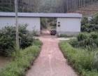 生态山羊养殖场转让