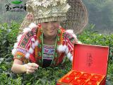 厂家批发世博会指定接待用茶叶 第一峰云雾茶 广东纯天然单枞丛茶
