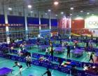 寒假特惠招生幼儿园、小学、初中、高中乒乓球专业训练