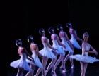 东营沙画 主持人 水鼓 肩上芭蕾 雀之恋 非洲鼓舞