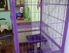 新买三层猫笼,搬家不用了