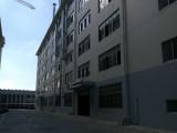 江南新型标准厂房300平起出售带50年独立产权