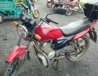 本店长期回收出售二手电动车助力车摩托车