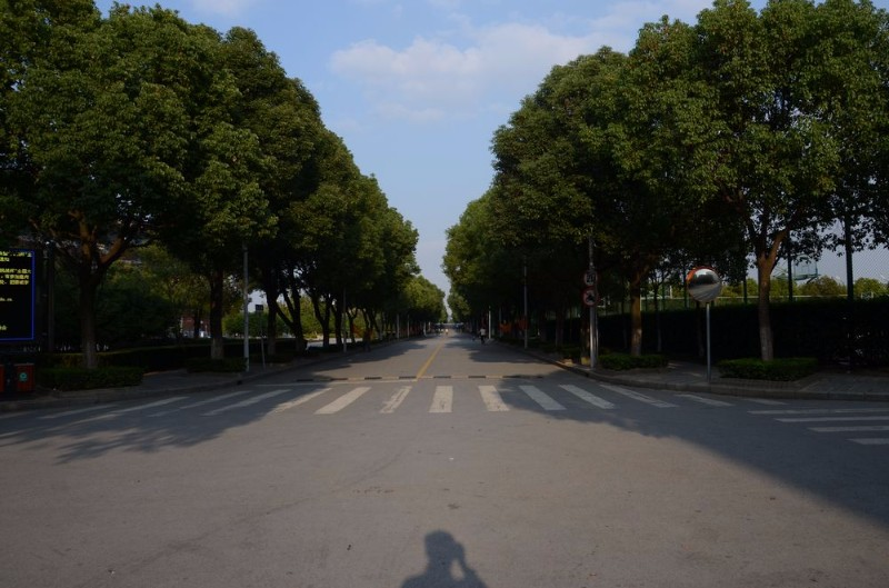 上海五年制大专排名.五年制大专学校有哪些