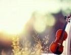 高端美女小提琴承接各类婚礼开业晚宴商演活动