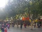 九龙坡中迪广场+双轻轨+步行街+商铺+出入口处