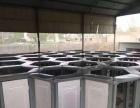 信阳雨屋低价出租机械大象机械巡游大象蜂巢迷宫