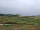出售宝安西乡土地300000平方米业主低价出售