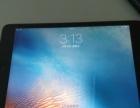 自用iPadmini2 16g 99新 未过保 国行