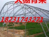 辽宁双膜大棚骨架c型钢架农业大棚流行双拱型大棚支架