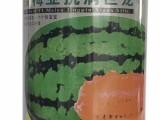 供应西瓜拉环种子罐 抗病巨龙铁罐专业定制