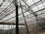 大棚加湿灌溉 贵州锦胜 人造雾自动化灌溉施肥杀毒