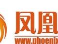 凤凰网推广代办签证申请