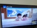 全新TCL液晶电视