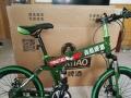 21变速折叠自行车