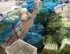 无锡安镇蔬菜配送