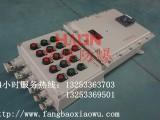 BXK8050系列防爆防腐控制箱(IIC)-防爆箱
