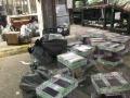 烟台,威海地区专业宠物托运