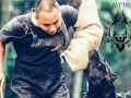 长沙训犬学校,长沙训狗基地,长沙狗狗训练学校