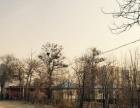 出租桓台柳泉路工业路露天烧烤场地一块