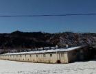三家乡榆树底村 厂房 600平米 养殖场