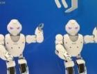 租赁机器人小优、阿尔法