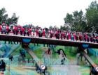江苏省大型游乐设备摇滚排排坐物美价廉
