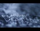 杭州专业活动直播宣传摄影制作—专业企业宣传制作-视频拍摄制作