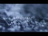 杭州專業創意視頻拍攝打造攝影制作 專業企業宣傳制作-視頻拍攝