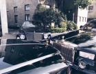 海城婚车,新玛莎总裁,宾利,劳斯