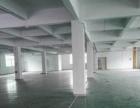 中山坦洲标准楼上650平大路边厂房