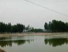 山东省淄博市沂源县20亩坑塘水面转让