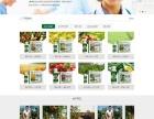 郑州网站建设,推广,微信分销系统开发