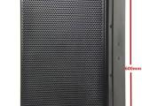 C5215奇峰音响15寸二分频专业箱
