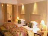 达蓬山酒店 达蓬山酒店加盟招商