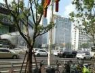 东街口新华都餐饮店转让,门面宽,停车方便,行业不限