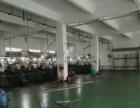 中心区大冲新出一楼1300平标准厂房出租带水电装修