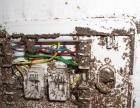 商业场所除虫害 新建建筑白蚁防御 除去家居住宅白蚁