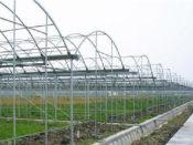 智能温室建设供应想建智能温室就到承航景观工程