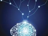 全腦開發教育機構加盟費用