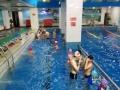 青年健身暑期游泳班三期报名了